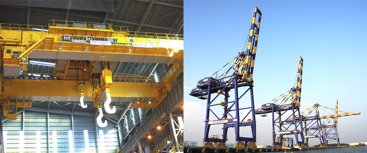 Crane_Surveys_Photo